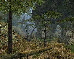 Vietcong fist alpha multiplayer coop maps